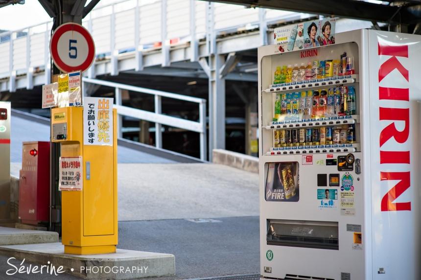 Visit to kyoto Japan